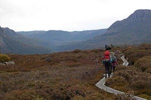 Trekkers-walking-through-the-expanse-of-the-Overland-Track