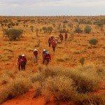 Walking across the desert